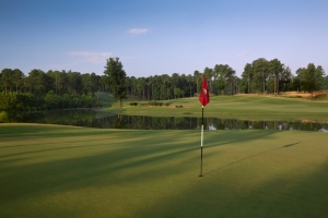 Cobblestone Park Golf Club 5